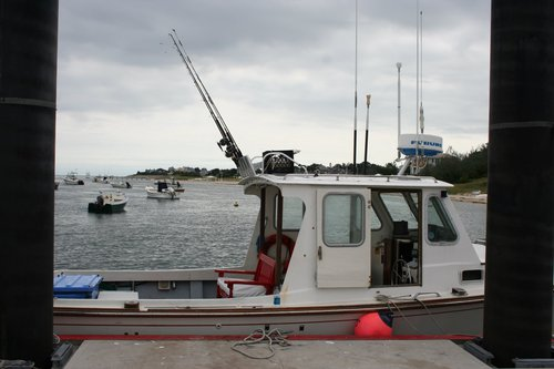 Cape cod fishing charters chatham for stripers striped for Cape cod fishing charters