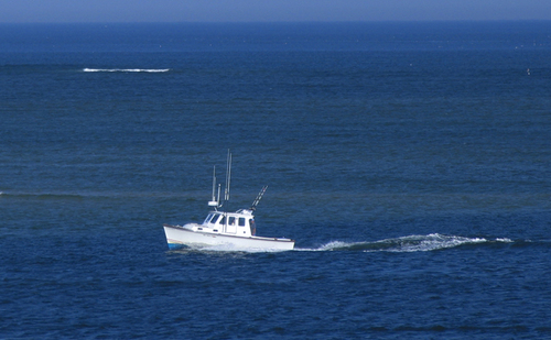 Cape Cod Fishing Charters, Chatham for Stripers, Striped Bass, Bluefish and Blues